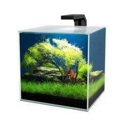 Cube 15 Clear fiskabúr