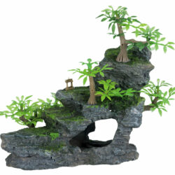 Rock stairs, plants 19cm