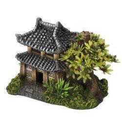 Asian House w.Plants
