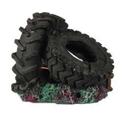 Big Tyres fiskabúraskraut